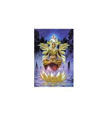 Briar Dharma - Venus of the Lotus