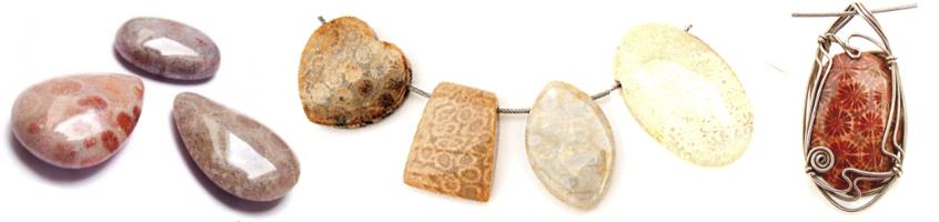 versteend koraal is een prachtige edelsteen in onze collectie op gemstoneshop.nl